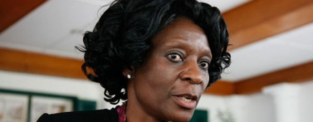 ZEC's unconstitutionally appointed commissioner(s)