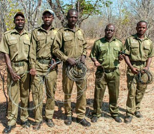 VFAPU scouts with some of the wire snares they have removed.