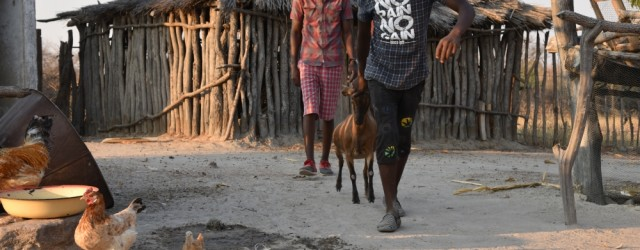 Climate change on the front line, in rural Zimbabwe