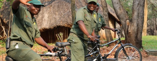 #ShockWildifeTruths: Bicycles help fight poaching in Vic Falls