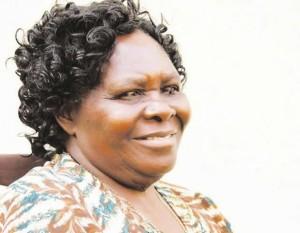 Masvingo Provincial Affairs minister Shuvai Mahofa