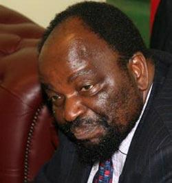 Foreign affairs minister Simbarashe Mumbengegwi