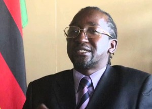 Ill-advised remarks spooked potential foreign investors ... Minister Patrick Zhuwao