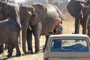 Sharon with some of the elephants ©NHU Africa
