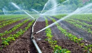 Water_Irrigation