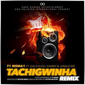 tachigwinha-remix