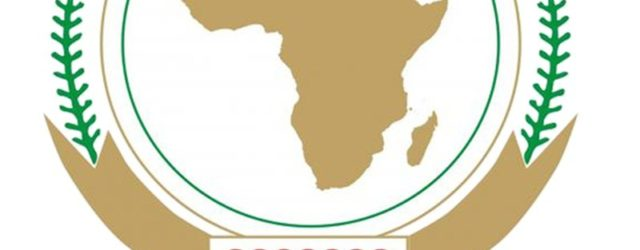 Silencing the guns: Creating a conducive environment for Africa's development: Forum commemorates Africa Day