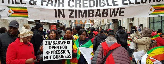 Zanu PF goes mad – Zimbabwe Vigil Diary