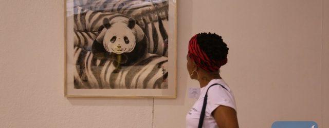 Zimbabwe eyes business chances at China-Africa Economic and Trade Expo